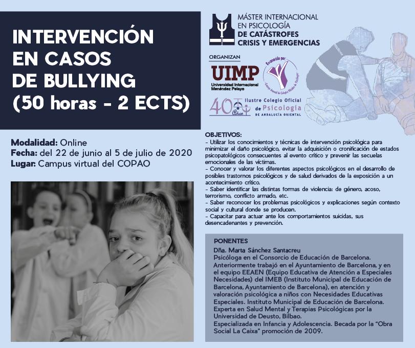 Intervención en casos de Bullying (50 horas)