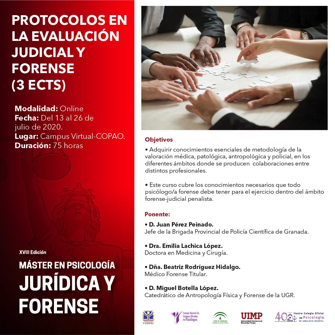 Protocolos en la evaluación judicial y forense (75 horas)